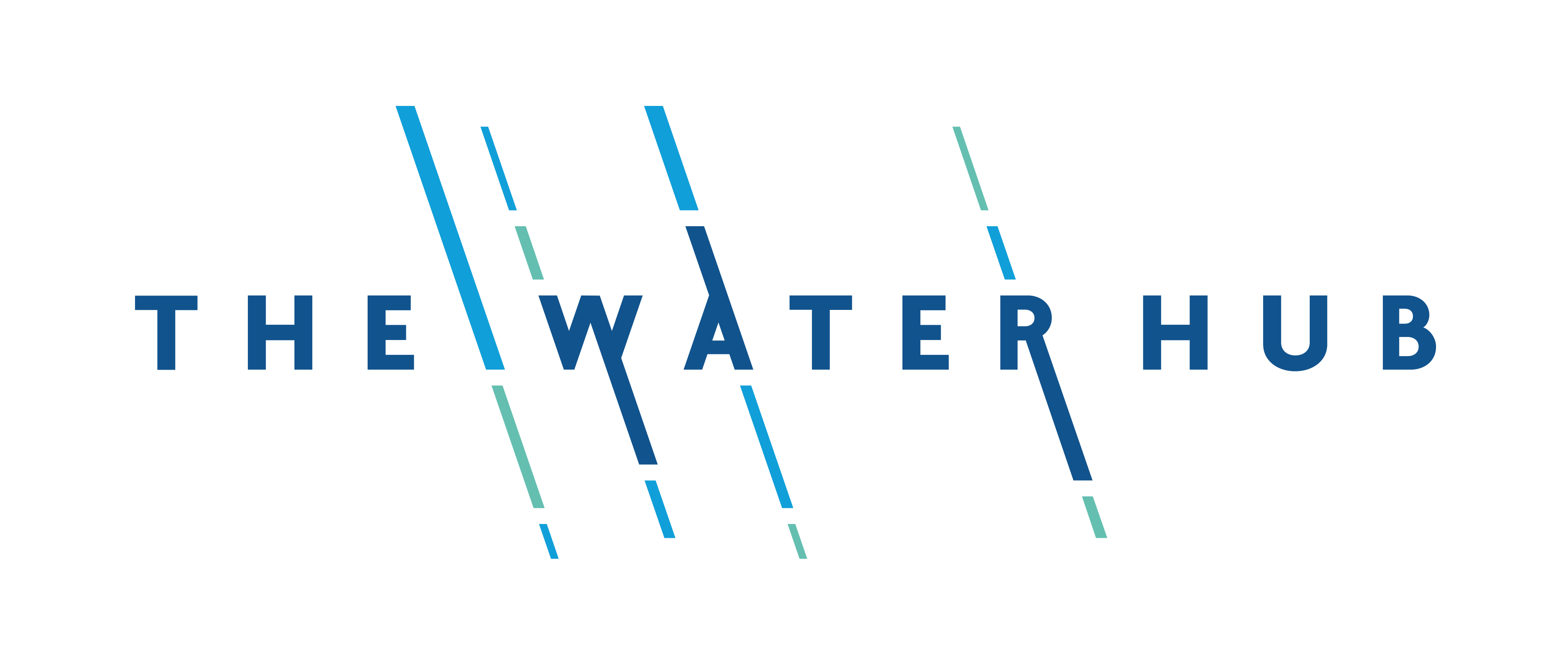 The Water Hub Banner